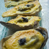 Fresh Shucked Capiz Oysters